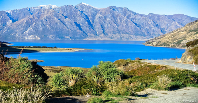 Rejsebudget til New Zealand