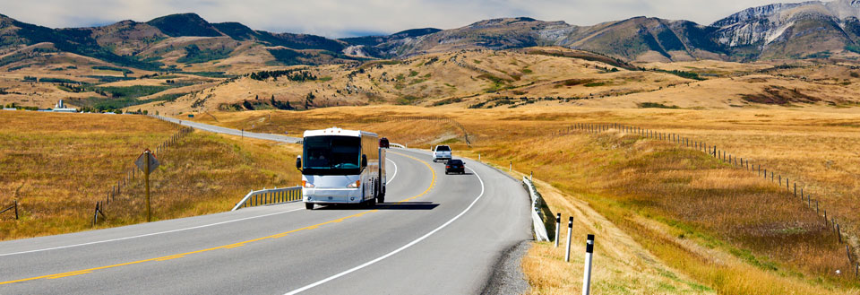 busrejser afbudsrejser