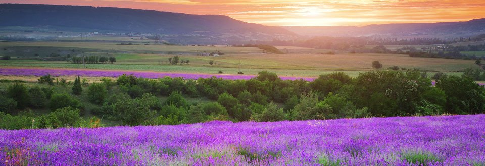 Feriebolig Provence